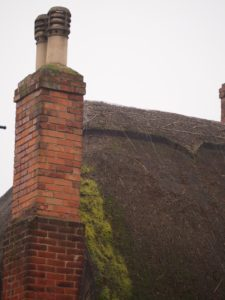 Moss build up causes underlying thatch to rot. You have the roof 'demossed' as required.