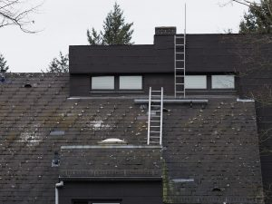 Roof Chimney Access